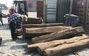 Hé lộ chủ nhân hơn 1.000m3 gỗ quý đi đường container từ châu Phi về Sài Gòn