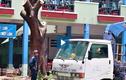 Video: Chặt cây phượng còn lại trong tai nạn khiến học sinh tử vong