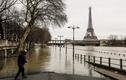 Nước lũ dâng cao, Paris chìm trong nước sông Seine
