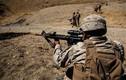 """Soi dàn súng """"khủng"""" của Thủy quân Lục chiến Mỹ"""