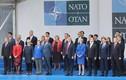 """Hội nghị thượng đỉnh NATO: """"Bằng mặt không bằng lòng"""""""