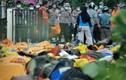 Rùng mình khu mộ tập thể của nạn nhân động đất-sóng thần Indonesia