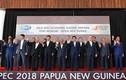 Hội nghị Cấp cao APEC lần thứ 26 kết thúc tốt đẹp