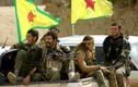 Bị vây Manbij, người Kurd vẫn âm thầm chiếm thêm đất tại Deir Ezzor