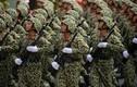 QĐND Việt Nam thuộc nhóm vượt trội trong khối ASEAN