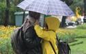 Dự báo thời tiết 9/2: Cận Tết Miền Bắc chuyển mưa rét