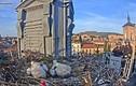 Thành phố bỗng nhiên hút khách nhờ cảnh cò làm tổ trên mái nhà