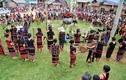 Người Pa Cô đâm trâu trong lễ hội 10 năm mới có một lần