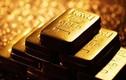 Hành khách bỏ quên 2 kg vàng trên máy bay