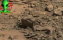 Phát hiện bàn tay khổng lồ trên sao Hỏa?