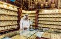 Hé lộ sự thật về thành phố Dubai giàu có nức tiếng