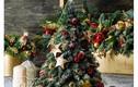 Giáng sinh 2017: Thêm lựa chọn với những mẫu cây thông tươi độc đáo
