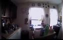 """Video: Bắt được """"kẻ trộm"""", vui mừng khi thả ra"""