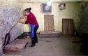 """Video: Cận cảnh """"nữ hoàng rắn hổ mang"""" chăm sóc 1.000 con rắn mỗi ngày"""