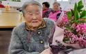 Mẹ của HLV Park Hang-seo muốn đến Việt Nam gặp con trai
