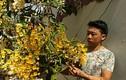 """9X """"già"""" kinh nghiệm trồng lan thủy tiên, kim điệp ra hoa cực đỉnh"""