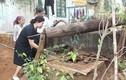 Giếng nước ở Đắk Lắk bỗng nhiên bốc khói nghi ngút, nóng 70 độ C