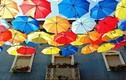 Khám phá những chiếc ô rực rỡ lạ kỳ ở Bồ Đào Nha