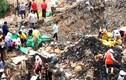 Video: Hàng trăm dân TQ đào trộm thịt tiêu hủy sát biên giới VN