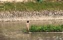 Công an xác minh vụ cô gái mặc đồ lót nhảy múa giữa sông Tô Lịch