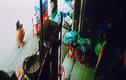 Video: Bắt cóc hụt em bé đang được bà bế trên tay tại Hội An