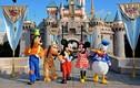 Video: Vì sao mớ rác gom về từ Disneyland bán được với giá hàng triệu USD?
