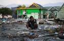Video: Xót xa người dân ở Indonesia bới rác ăn sau động đất