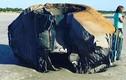 Vật thể khổng lồ bí ẩn dạt vào bờ biển Mỹ