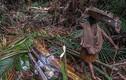 """Video: Bộ lạc nguyên thủy ở Indonesia lần đầu """"mở lòng"""" với thế giới"""