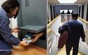 """Video: Người Hàn Quốc trả bộn tiền để được """"biệt giam"""" trong tù"""