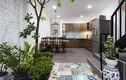 Căn nhà 4 tầng khiến ai cũng thích vì điểm nhấn cây xanh