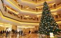 Loạt cây thông Noel đắt đỏ bậc nhất thế giới