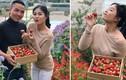 BTV Hoàng Linh bất ngờ làm hôn phu nổi giận khiến chồng hành xử lạ
