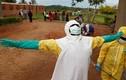 Phụ nữ Congo phải đổi tình dục lấy vaccine ngừa virus Ebola