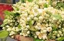 Sau Tết, dân Hà thành chơi hoa quê thơm lừng nửa triệu/kg