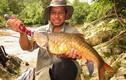 """Cá đặc sản được mệnh danh """"vong bất liễu ngư"""" có giá quý như vàng"""