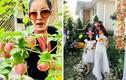 Choáng ngợp trước vườn nhà 40 tỷ của hoa hậu Mỹ Vân