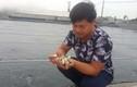 Nghề lạ ở Ninh Bình: Cân cát lấy tiền thu, triệu đồng