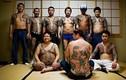 """Trùm mafia Nhật Bản trả đũa nữ y tá vì làm hỏng """"của quý"""""""