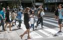 Video: New York đề xuất cấm vừa đi bộ vừa nhắn tin