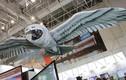 Video: Nga tiết lộ máy bay không người lái siêu độc hình cú mèo