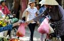 Video: Hà Nội quyết năm 2025 sẽ không dùng túi nilon