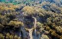 Video: Cảnh hoang tàn ở rừng phòng hộ bị lửa thiêu 3 ngày nhìn từ trên cao