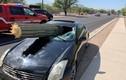 Video: Tài xế may mắn thoát chết sau khi 'xương rồng khổng lồ' đâm xuyên ôtô