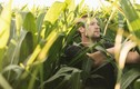 Loạt nông dân Youtube kiếm tiền tỷ dễ dàng nhờ làm video