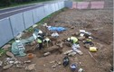 Bí ẩn hàng chục bộ xương trong quan tài đá nằm sâu dưới sân trường
