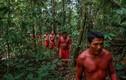 Video: Thổ dân Waiapi và cuộc chiến sinh tồn để giữ rừng Amazon