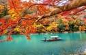 Video: Cảnh sắc 4 mùa tựa chốn thần tiên ở Nhật Bản