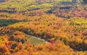 Video: Cùng ngắm vẻ đẹp mùa thu trên khắp nước Mỹ