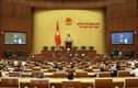 Nội dung tuần làm việc thứ 2 của Kỳ họp thứ 8 Quốc hội khóa XIV
